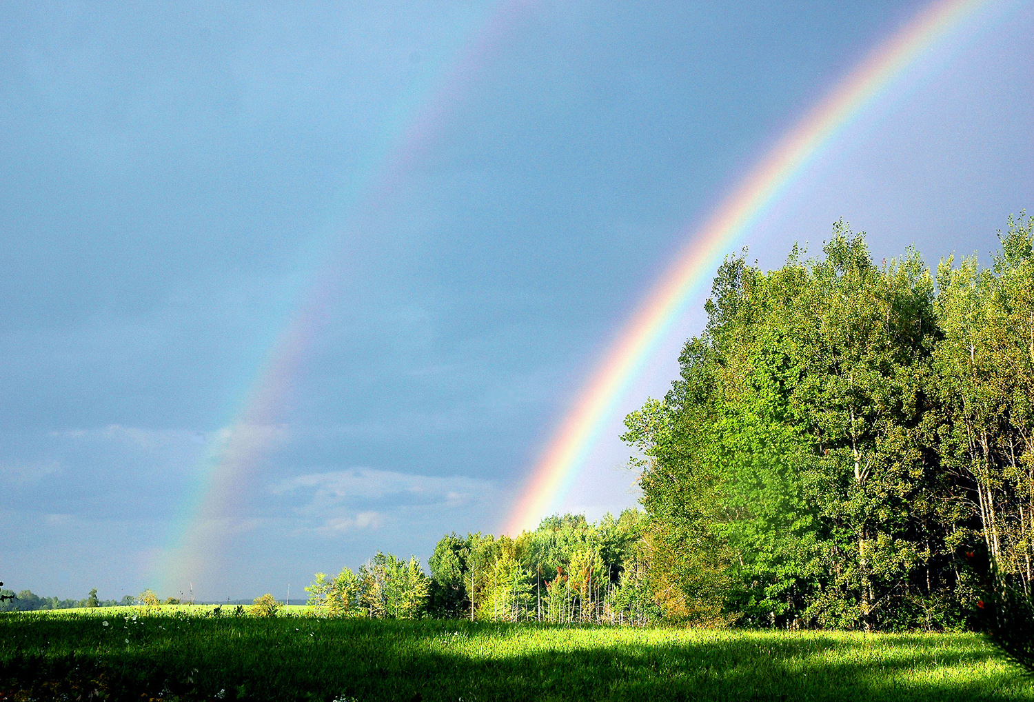 Website - A14 - Rainbow - Double